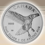 Silber Birds of Prey - Red-Tailed Hawk 1 oz