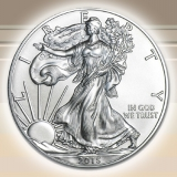 Silber American Eagle 1 oz - Burnished 2015