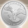 Silber Birds of Prey - Peregrine Falcon 1 oz